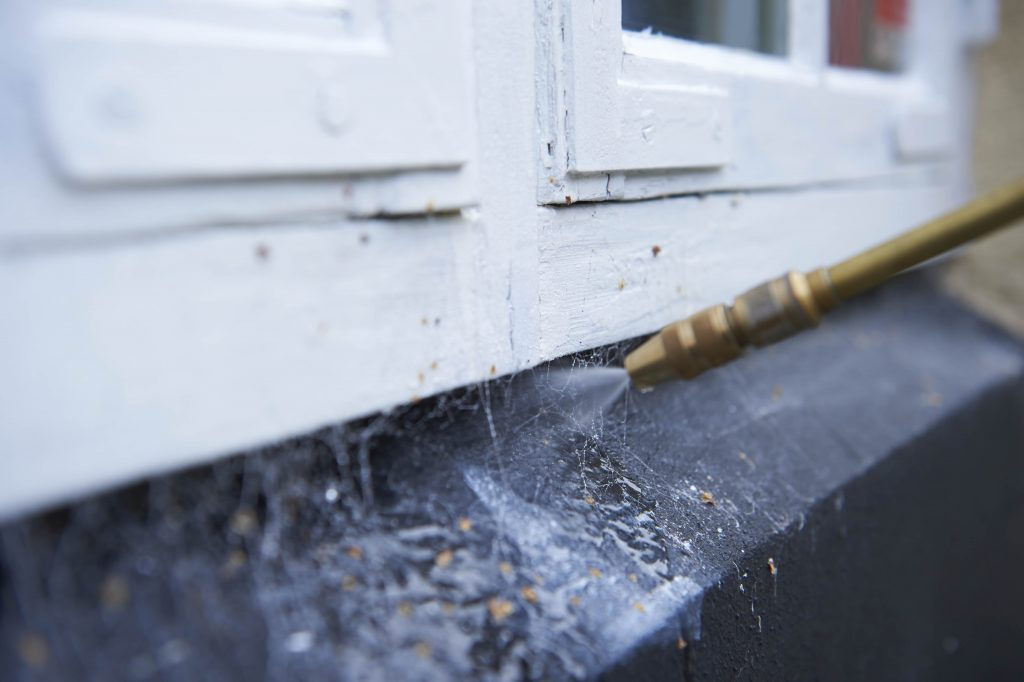 Sprøjte mod edderkopper